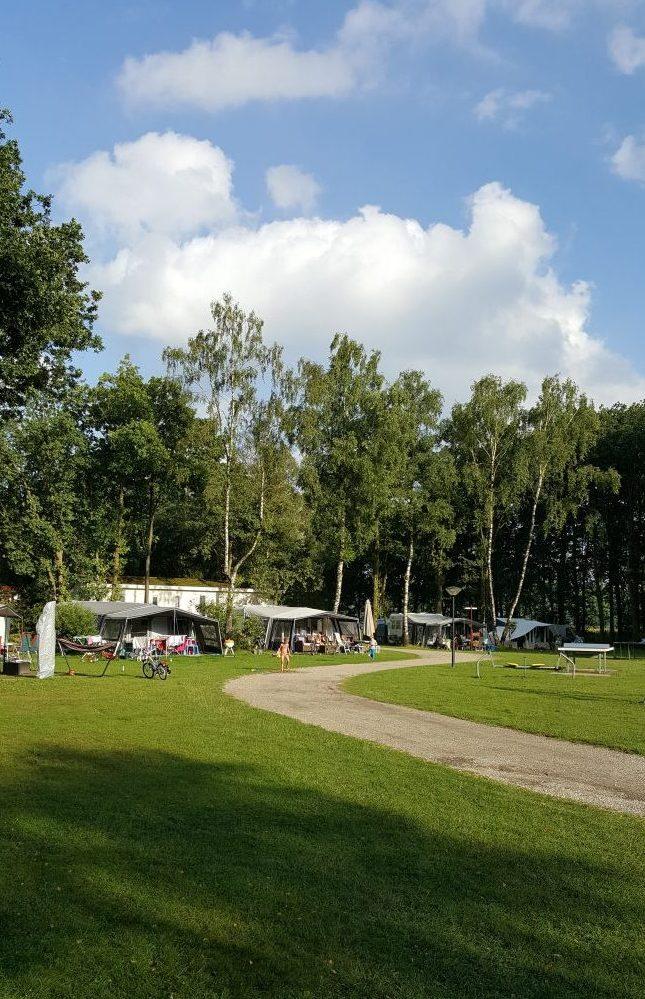 Camping weg gras lucht bomen