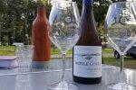 Fles wijn met twee glazen wijn kruik camping kampeerspullen
