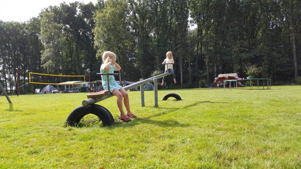Kinderen wip camping veld
