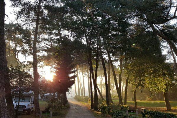 Camping met opkomende zon die schijnt door de bomen in oktober