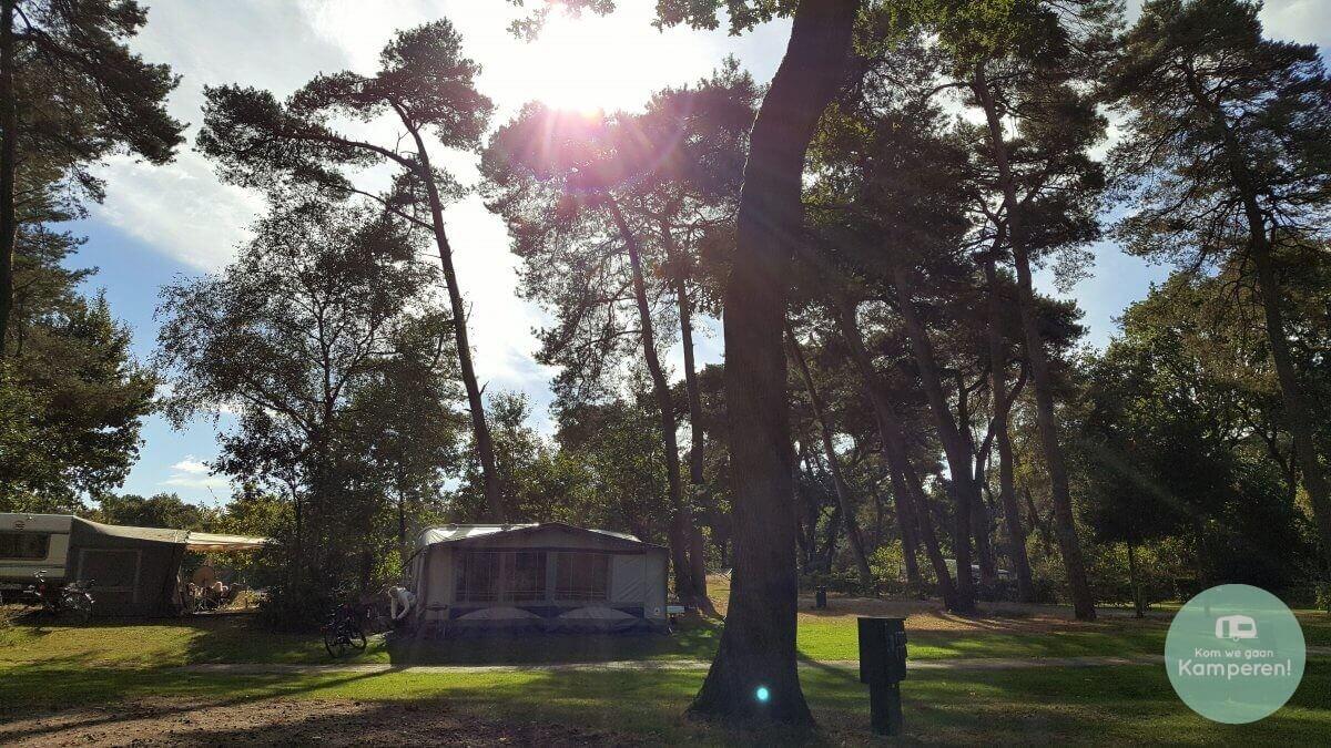 Caravan met voortent op bosrijke camping zon schijnt door de bomen